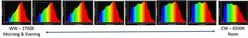 PERFEKTLIGHT Spectral Power Distribution Graphs