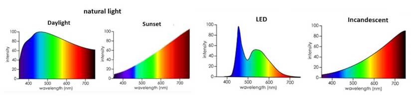 Spectral Power Distribution Graphs