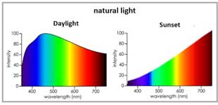 SPD of daylight and sunet